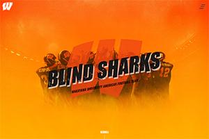 BLIND SHARKS